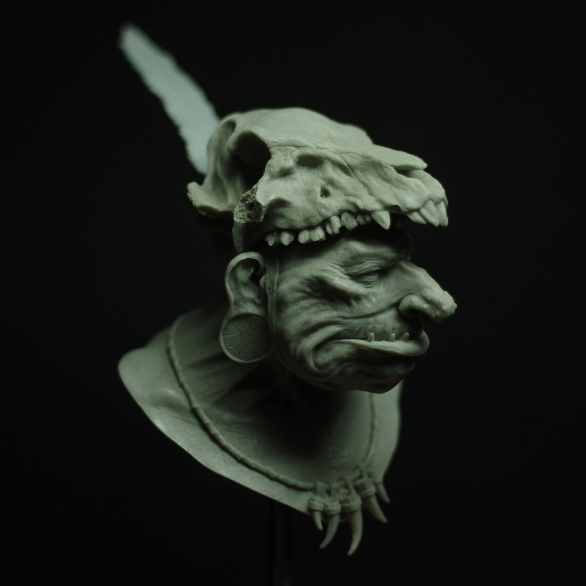 wild-troll